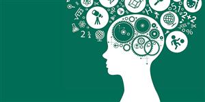 藤校终身教授科研项目|心理学与人类道德发展探究