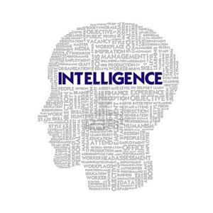 藤校科研终身教授项目 人类智力起源与本质探究