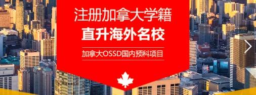 OSSD 项目