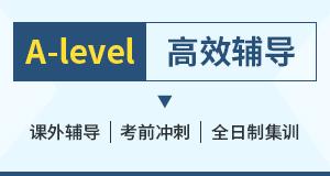 A-level高效辅导